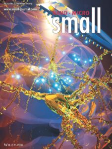 Cover Zilony-Hanin et al 2019 Small